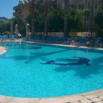 Morning at the pool :)