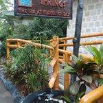Cebu's top 4