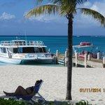 Scuba / Snorkel Boats