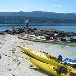 Salt Spring Adventure Co - Day Tours