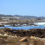 Views from 17 mile drive