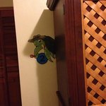 This little turtle was hiding out behind the entertainment center! They're all around the hotel.