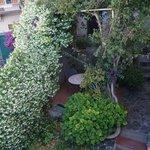 Raggio di Luna - garden