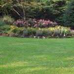 beautiful grounds area