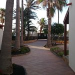Hotel grounds3