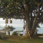hamac et lanternes près piscine