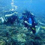 Mergulho de cilindro nas Islas Rosario