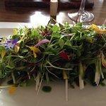 Atlantico salad starter