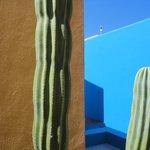 contraste con el desierto.