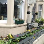 Beautiful flower boxes out front