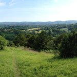 View from the top of Shoulder of Mutton Hill, looking south to Petersfield