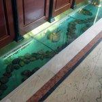 Необычный аквариум у стойки рецепшен