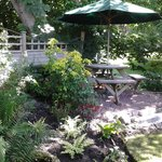 new riverside fern garden