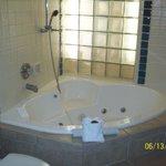 No stand up shower/regular tub