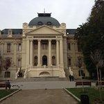 Fine Arts Museum 7