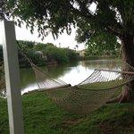 Hammock by pond