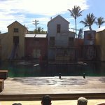 Seal Show! Funny!!