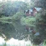 Vista de la habitacion desde el lago