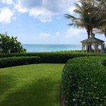 Lawn by the pool and beach