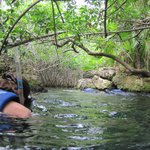 Entrance cove at the top of the river for snorkeling