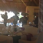Live music at dinner in the Mexican Restaurant