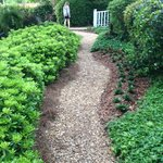 Welcoming Meandering Path