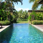 Pool overlooking paddy fields at the villa