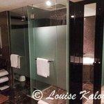 Toilet/Shower in bathroom & Mirrored cupboard
