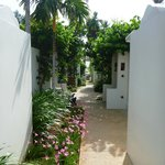 One of the beautiful alleys