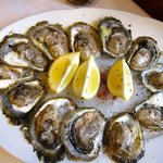 Oysters are small and only served with lemon wedges