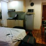 Room with fridge, microwave and one hotplate
