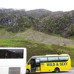 The Bus @ Glencoe