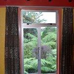 Beautiful garden outside window