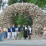 arco fatto di palchi di cervo
