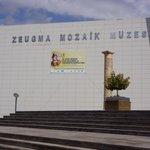 Zeugma Mozaik Müzesi 9