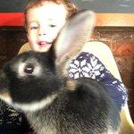 Stroking bunnies!