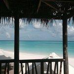 bar de la plage au Top