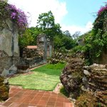 Beautiful Gardens in the Ruins...