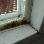Fugen des Badezimmerfensters