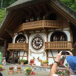 One of the word's largest cuckoo clocks