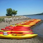 Our fleet of kayaks ready to launch!
