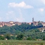 The view of Siena from the garden