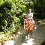 horse riding in the hotel grounds