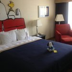Camp Snoopy room