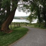 View from Delamont Country Park