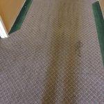 skid marks on the carpet?