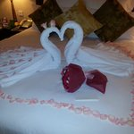 """""""Love Birds"""" our welcome to our room"""