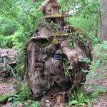 Fairies house