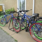 Rent bikes and see Quadra Island