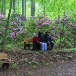 Reese sitting with grandma and grandpa